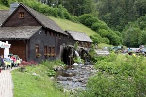 Tagestour Mittlerer Schwarzwald